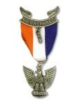 Eagle pin