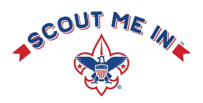 scout-me-in-fleur-de-lis